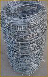 高いQuanlityの低炭素の鋼線が付いている有刺鉄線
