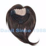 El cabello virgen recta peluca parcial