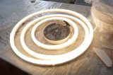 Luce moderna del pendente Hanging Circle LED ( ML8051A105R )