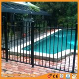 パネルを囲う装飾的なプールの安全プール