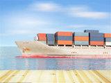 O transporte marítimo de melhores Ex Shenzhen/Guangzhou para Acajutla/San Salvador
