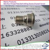 Pneu en acier au carbone de haute Quanlity cambrioleur la preuve de la vis à vis/Vis /pneu pour les pneus