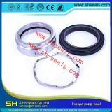 Sh-SLR-65 Замена уплотнителей Inoxpa Prolac и зеркальная насосы