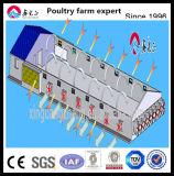 Estructura de acero caliente de Venta de pollo criador de pollos de cría de aves de corral Casas