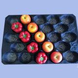 Canadá e EUA grossista populares Bandeja de plástico para acondicionamento de tomate fresco