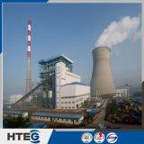 Caldeira padrão do leito fluidizado de circulação do fornecedor Hteg-75/5.29-M de ASME China