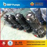 Certifiés ISO9001 Pompe à eau submersibles