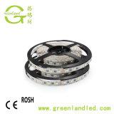 Hoher heller SMD5050 60LEDs 14.4W 12/24V RGBW LED Streifen