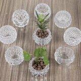 2017 de Nieuwe Vaas van het Glas van het Ontwerp Kleine voor de Decoratie van het Huis