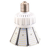 EpistarはMeanwellドライバーUL Dlc ETLのSAAによってリストされている80W庭のポストの上LEDライトを欠く