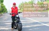 Motorino elettrico di Citycoco del doppio pacchetto della batteria su intervallo 160km per carica