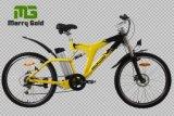 De la bici eléctrica con suspensión