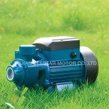 소성 물질 제트기 P 시리즈 정원 수도 펌프 세트