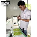 Mobiele Transportband van de Pallet van het Voedsel van Hairise de Elektrische Draagbare Geautomatiseerde