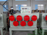 Qualitäts-und hohe Leistungsfähigkeits-Haustier-Verpackungs-Brücke-Produktionszweig