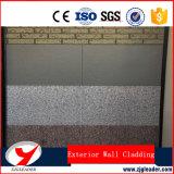 De decoratieve Raad van het Cement van de Vezel van de Bekleding van de Muur van het Comité van de Muur Buiten
