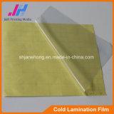 Pellicola fredda del PVC della laminazione