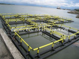 Aquiculture de prix concurrentiel cultivant des cages de poissons