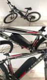 Pacchetto per le bici elettriche, tipo della batteria di alta qualità LiFePO4 36V 11.6ah del delfino