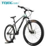 긴 일생 산악 자전거 5 년 또는 파란 MTB 자전거