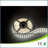 Indicatore luminoso di striscia flessibile bianco di colore SMD3014 LED