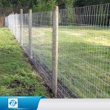 Bauernhof, der das Ineinander greifen repariert geknotet einzäunt, Bereich-Zaun fangend