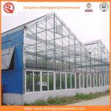 野菜のための農業ガラス温室