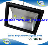 Yaye 18 Best Sell Newest Design 80W 100W 150W LED Tunnel Light / LED Wall Washer Light com Ce / RoHS Aprovação