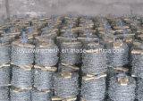 Galvanisierter heißer Verkauf des Stacheldraht-Bwg12*Bwg12 mit Bescheinigung (Fabrik)