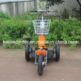 障害者のための3つの車輪の電気スクーターのZappyスクーター