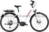 粋なオランダ人デザインと電気Bafangの最大中央モーターまたは貨物バイクが付いている700cリチウム電池都市様式のEバイクか電気自転車/中間駆動機構の電気バイク
