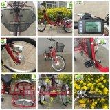 Triciclo eléctrico del cargo del uso personal