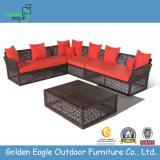 PE плетеной садовая мебель для отдыха на открытом воздухе плетеной мебели (S0080)