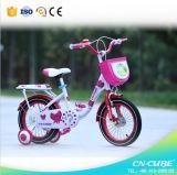 La bicicletta della montagna dei 2015 bambini scherza la bici