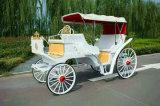 Nuevo diseño de la Boda Boda Princesa Pferdekutschen CARRO carro de caballos