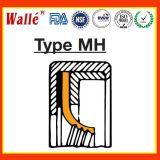 Радиальный Gfd манжетные уплотнения типа Mh с тефлоновой подложки уплотнительную кромку