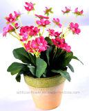 Begonia colorida artificial en el crisol de papel de Mache para su decoración