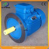 Taizhou Y2 75HP/CV 55kw 50/60Hzの鋳鉄のMoteur Electriqueモーター
