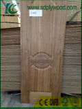 Les cendres/Oak/Porte de placage de noyer peau /Panneau de porte en bois/Peau de porte