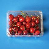 de beschikbare container van het het fruit verpakkende dienblad van de clamshellsblaar voor druiventomaten