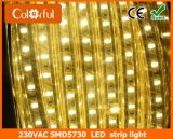 高品質の高い明るさAC230V SMD5730 LEDのストリップ