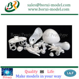 Productos plásticos impresos 3D baratos de SLA/SLS