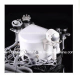 Кожа вакуума кавитации RF затягивая &Hot и холодное оборудование красотки молотка