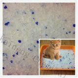Litière du chat colorée