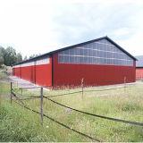 Stahlkonstruktion-Haus für Bauernhof-Lösung vorfabrizieren