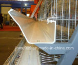 Il pollame d'acciaio di alta qualità alloggia la strumentazione dell'azienda agricola di pollo