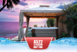 Max 15 AMP Just Plug in Portátil 3 lugares SPA Pool Hot Tub Tampa de SPA grátis