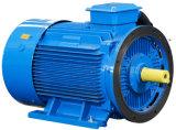 Pompa rotativa gemellare del compressore d'aria della vite