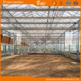 Qingdao Academy를 위한 유리제 다중 Span Greenhouse