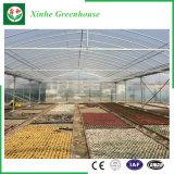 Serre di plastica di agricoltura/annuncio pubblicitario/giardino con il sistema di raffreddamento